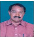 vice-president